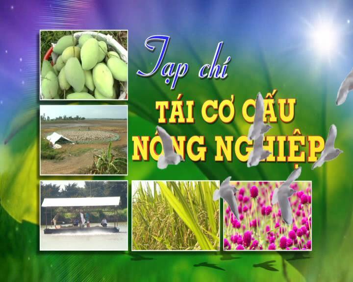Tạp chí tái cơ cấu nông nghiệp - 17/01/2021: Nông sản Đồng Tháp tất bật đón Tết
