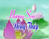 Hương sen Đồng Tháp - 04/9/2020: Quán cơm chay 0 đồng