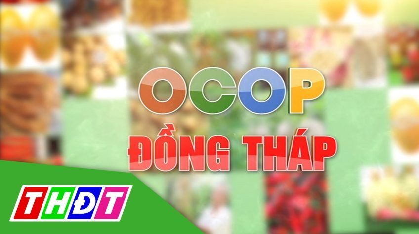 OCOP Đồng Tháp - 20/9/2020: Câu chuyện về bánh khoai môn hạt sen