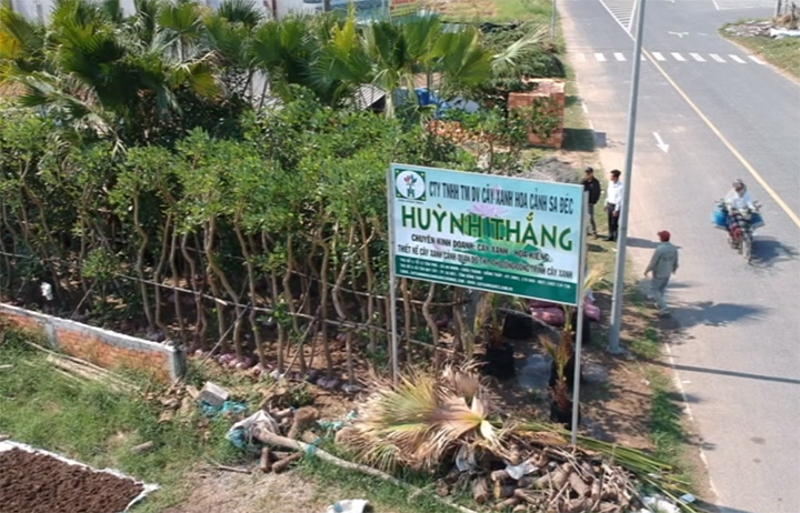 Khởi nghiệp - 17/7/2020: Cây xanh Huỳnh Thắng
