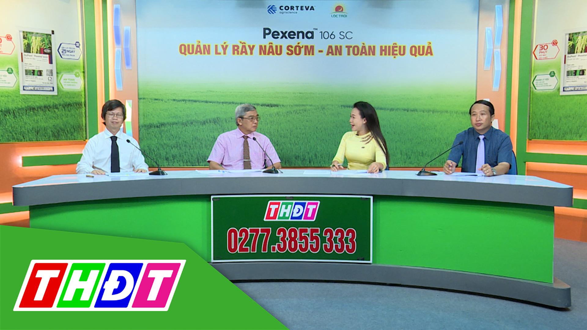 Tư vấn Khuyến nông - 14/12/2020: Quản lý rầy nâu sớm - An toàn hiệu quả