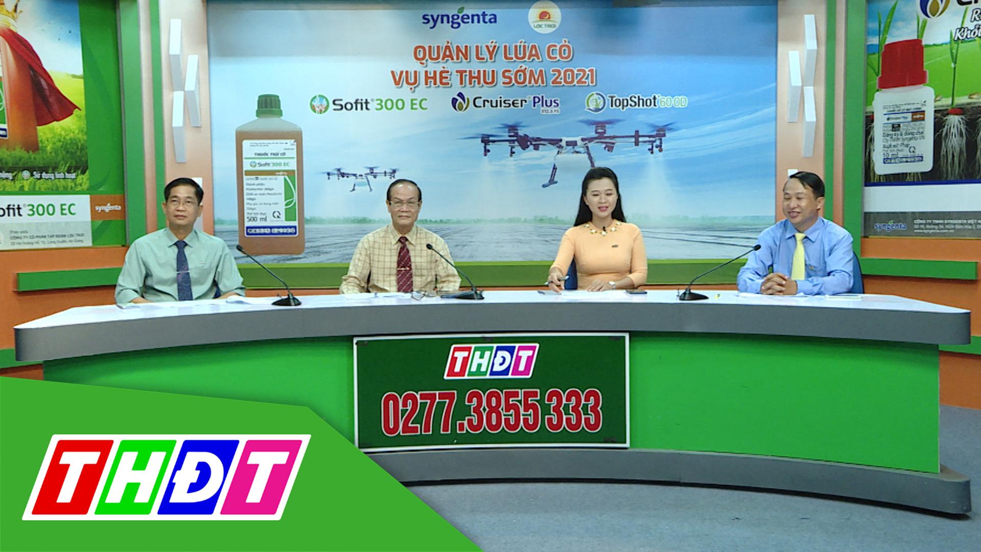 Tư vấn khuyến nông - 15/3/2021 - Dứt sạch đạo ôn - Cứng cây đứng lá