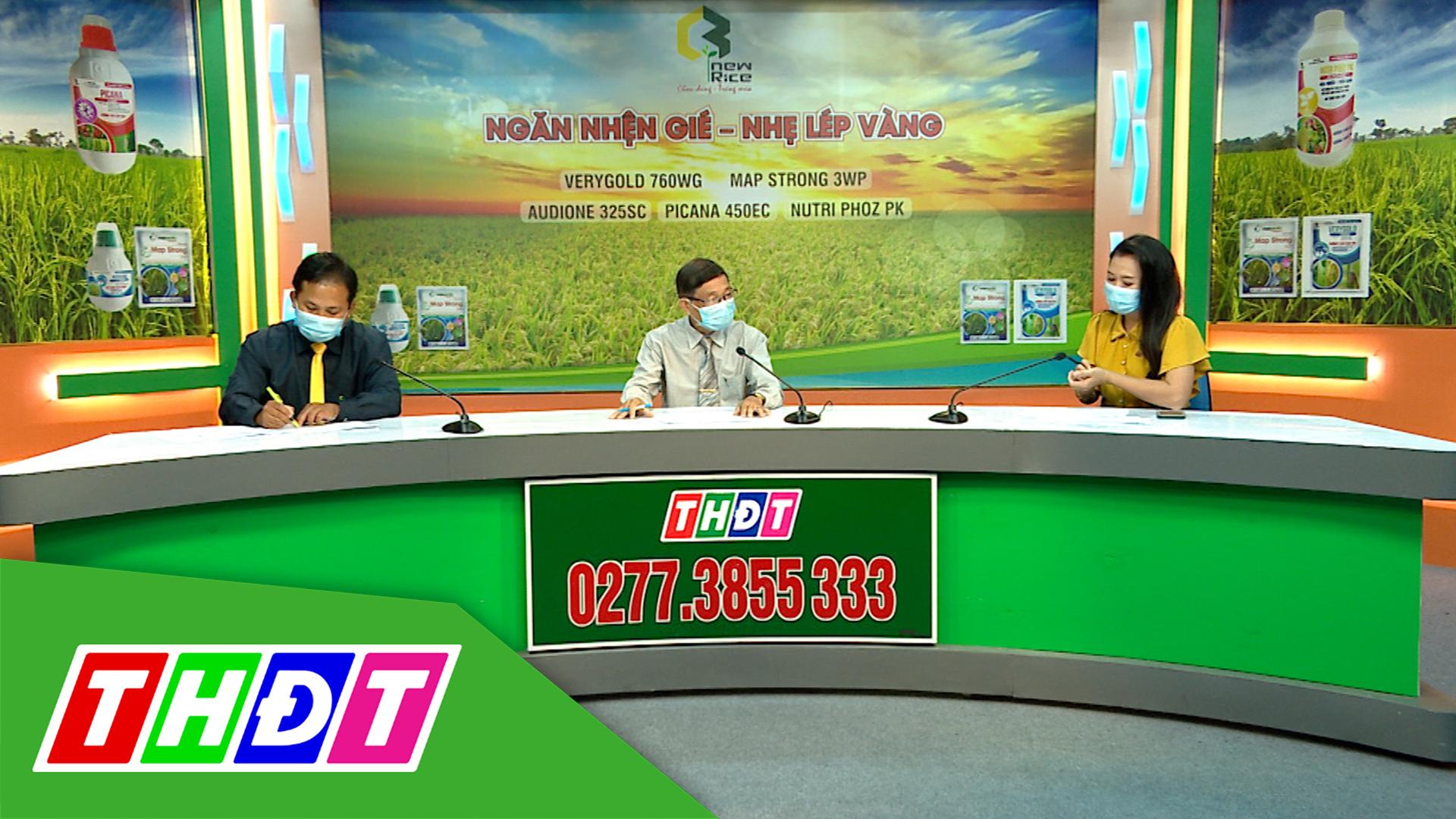 Tư vấn Khuyến nông - 7/6/2021 - Ngăn nhện gié - Nhẹ lép vàng