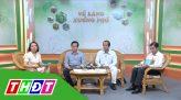 Về làng xuống phố - 3/8/2020 - Đồng Tháp tiếp tục phòng chống dịch Covid-19
