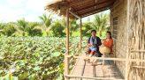 Tạp chí Du lịch xanh - 25/9/2020: Khám phá VietMekong Farmstay
