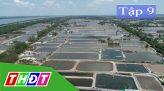 Ký sự Tình người nơi hạn mặn - 12/7/2020 - Tập 10: Cù lao Dung lao đao theo dòng mặn ngọt