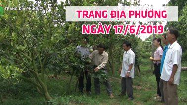 Trang tin địa phương - Thứ Hai, 17/6/2019 - Thành phố Cao Lãnh