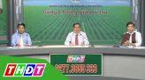 Tư vấn khuyến nông - 21/03/2019: Mầm khỏe trong điều kiện khô hạn