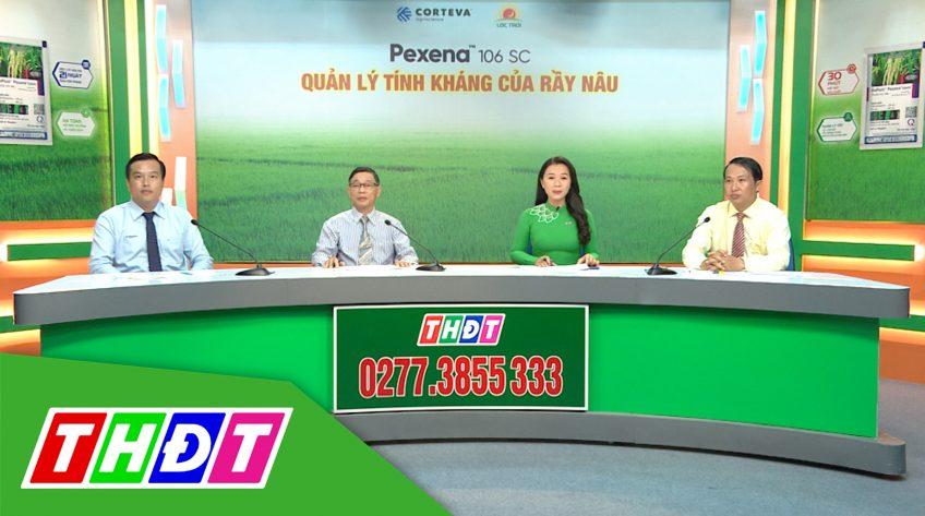 Khuyến nông - 30/11/2020 - Quản lý tính kháng của rầy nâu