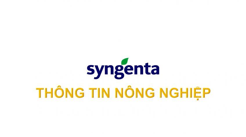 Syngenta Thông tin nông nghiệp - 06/6/2021