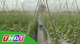 Tiếp sức cùng nông dân - 26/5/2020 - Độc đáo thiết bị gieo hạt đậu phộng