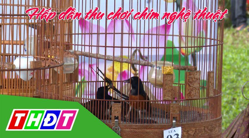 Kỳ thú sinh vật cảnh: Hấp dẫn thu chơi chim nghệ thuật